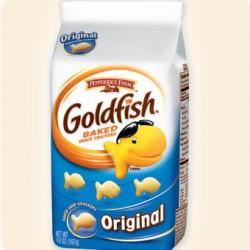 pfgoldfish2